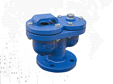 Automatic exhaust valve