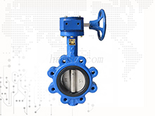 Worm gear operated lug butterfly valve